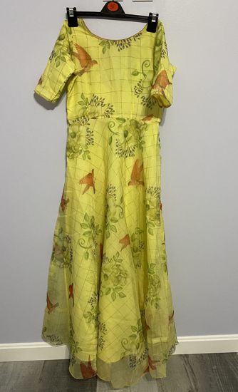 Picture of Organza Long dress