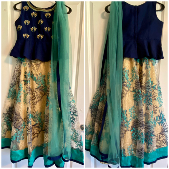 Picture of Lehenga with crop top and with net dupatta