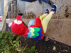 Picture of Halloween Colorful Parrot Costume for 1 year old baby