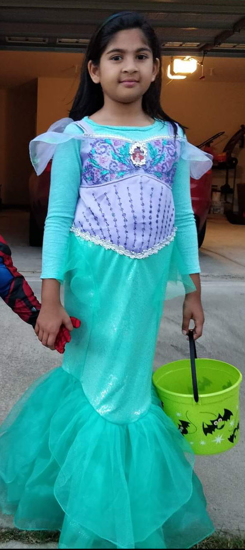Picture of Ariel Mermaid Halloween costume for 7-8 old years baby girl.